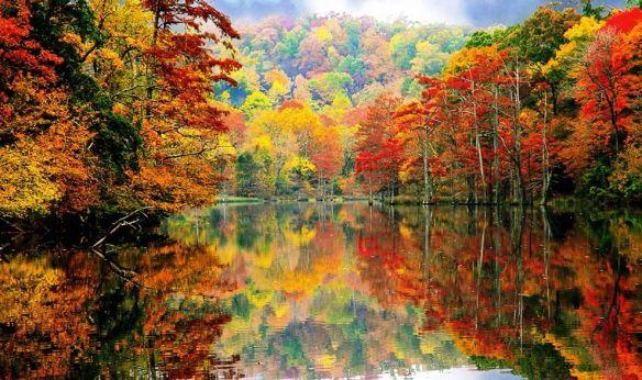 Image courtesy of http://www.anamiandjanine.com/blog/